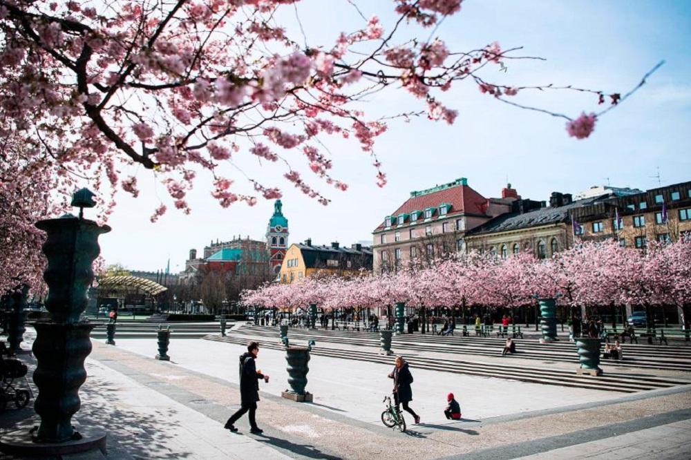 Mùa xuân 2020 giữ vị trí đặc biệt trong tim đối với sinh viên Việt Nam tại Thụy Điển